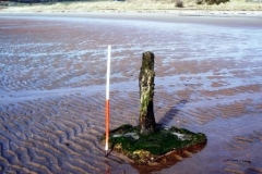 scalpsie-bay-ww2-anti-glider-posts-2