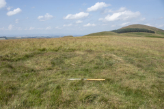 NT85502 27093 A ring ditch feature on the high plateau over the border in England, Halterburn Valley project 2021