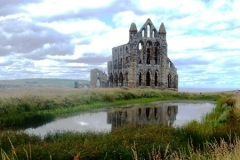 whitby-abbey-s-hothersall-honourable-mention