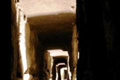 dorothy-gormlie-members-vote-knowth-looking-into-the-past